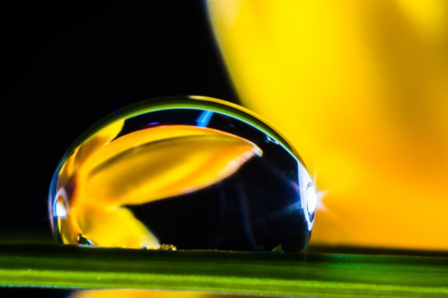 drop-of-water-361149_1280