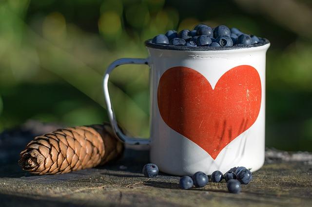 blueberry-1505482_640