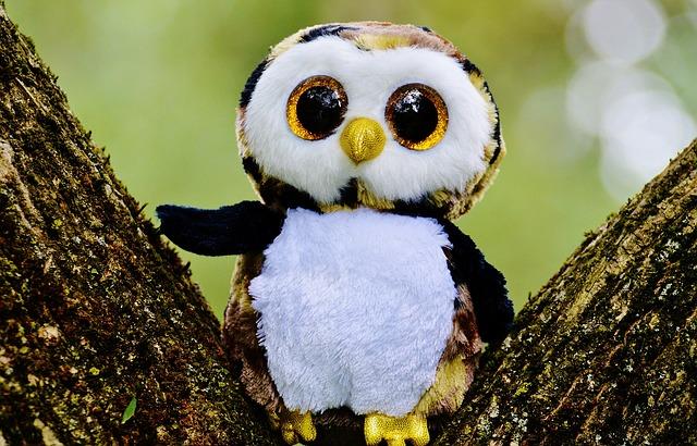 owl-845131_640