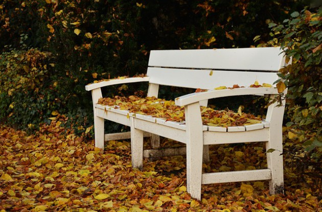 park-bench-1794181_640