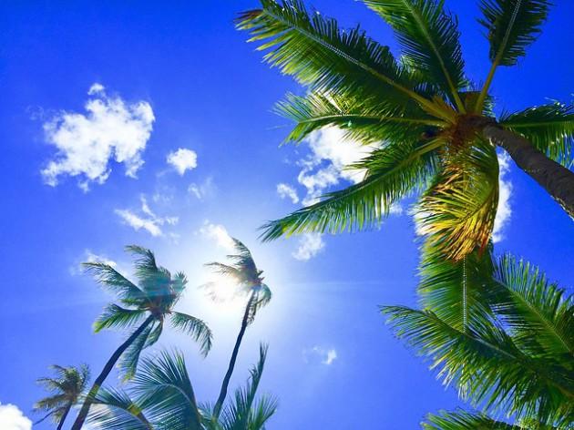 hawaii-2700190_640